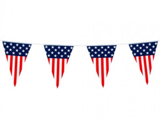 American Party Flag Bunting (6m)