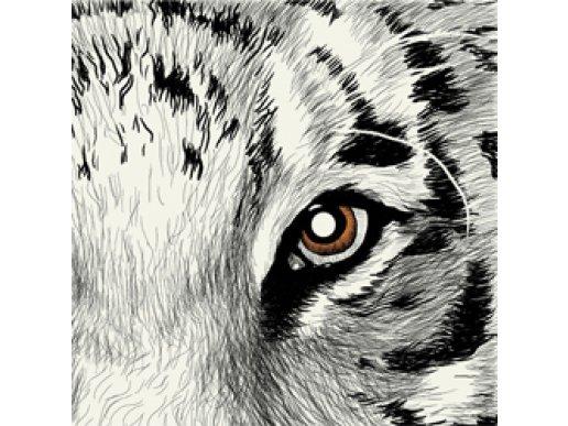 Elise Χαρτοπετσέτες Το Μάτι Του Τίγρη 24/Τμχ