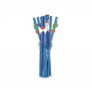 Llama and Cactus Blue Chevron Paper Straws (10pcs)