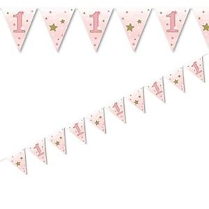 Twinkle little Star pink flag bunting